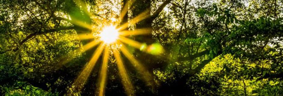 Heilenergie der Sonne