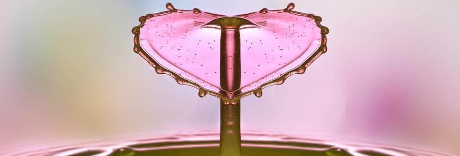 Heiler sein ist wie das Erblühen einer Blume